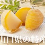 "<span class=""title"">山口県の特産品<お菓子編></span>"